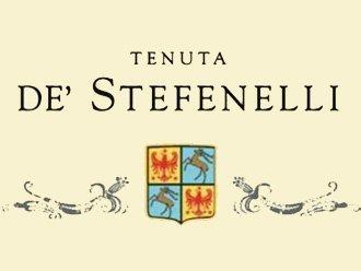 de stefenelli